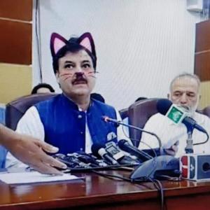 猫耳大臣、SNSで瞬く間に拡散 会見生中継で「猫耳アプリ」起動