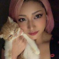 木村花さんが亡くなる直前に愛猫をかごに入れ事務所前に